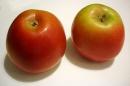Apples are full of fiber