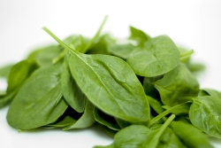 Spinach contains high amounts of iron