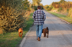 Even a short walk can help boost the immune system