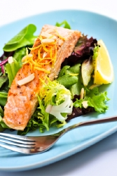 Salmon contains high levels of muscle building protein