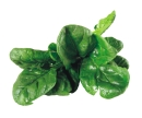 Spinach has many health properties