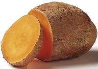 Sweet potatoes are high in vitamin a
