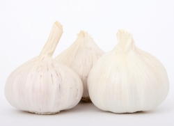 Garlic is high in natural antioxidants